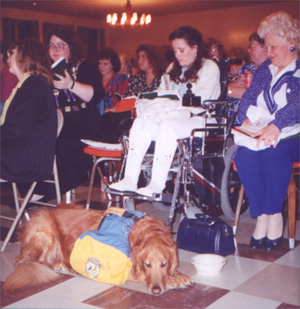 Dog in attendance
